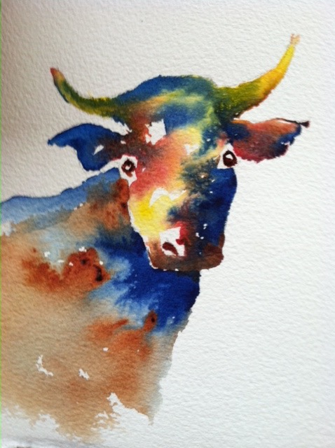 Cow, blue face